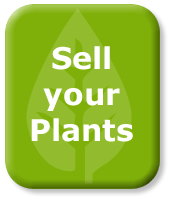 Sell Your Plants