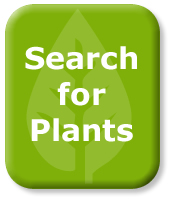Search For Plants